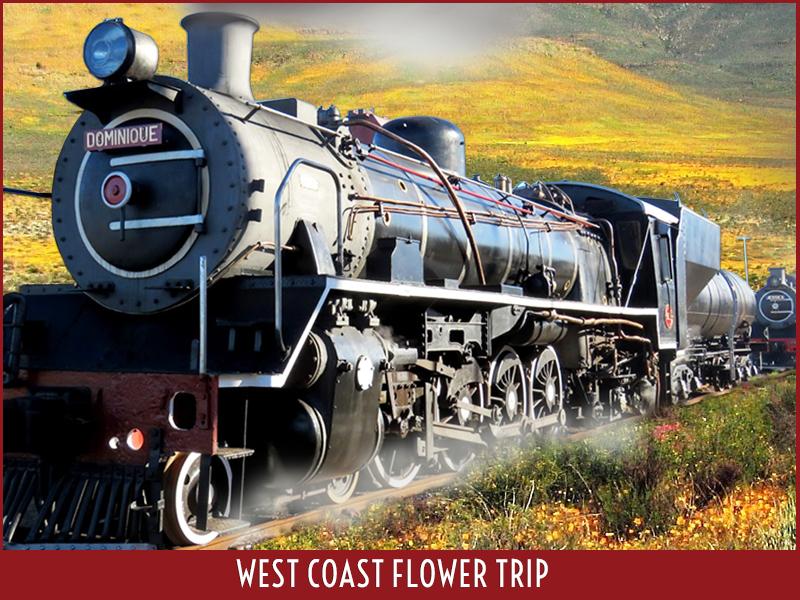 West Coast Flower Trip Photo2